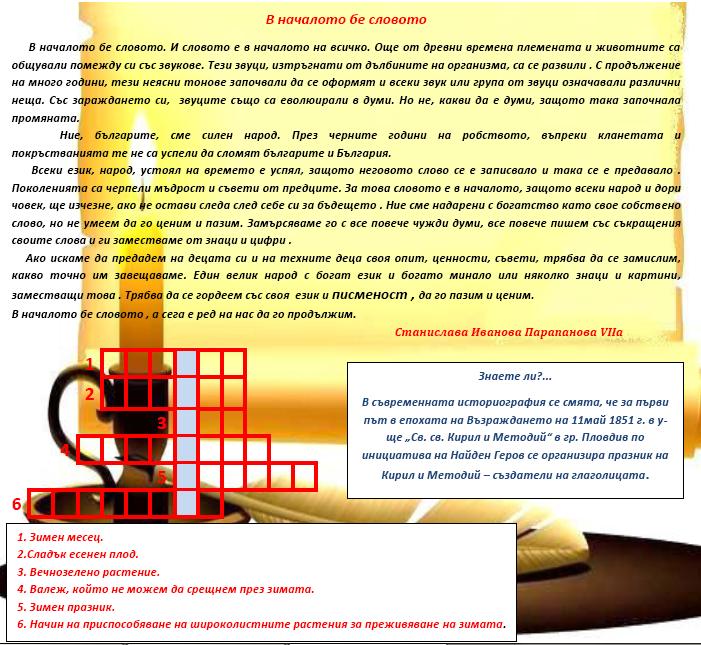 Vest_11